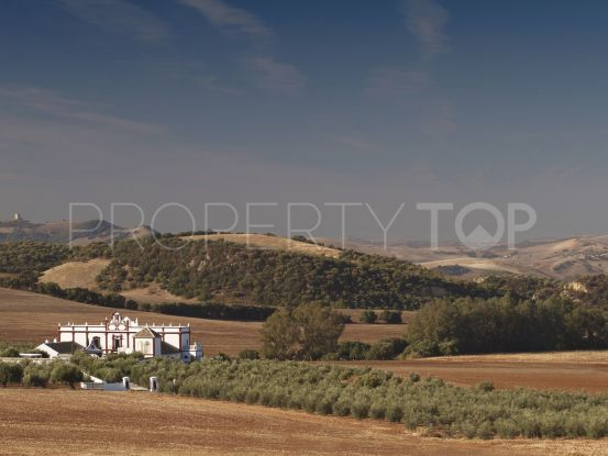 Finca with 7 bedrooms in Ronda | Real Estate Ivar Dahl