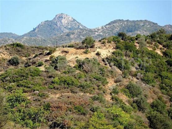 Los Altos de los Monteros plot | New Contemporary Homes - Dallimore Marbella