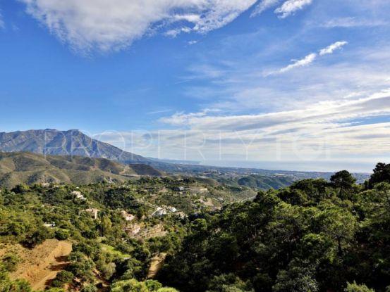 For sale plot in Benahavis | New Contemporary Homes - Dallimore Marbella