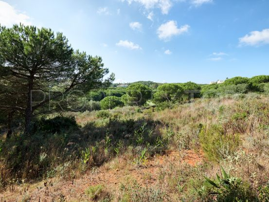For sale Sotogrande plot   Riva Property Group