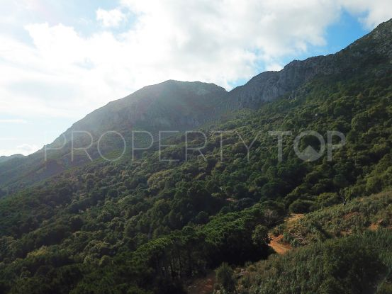 Plot for sale in Casares Montaña | Winkworth