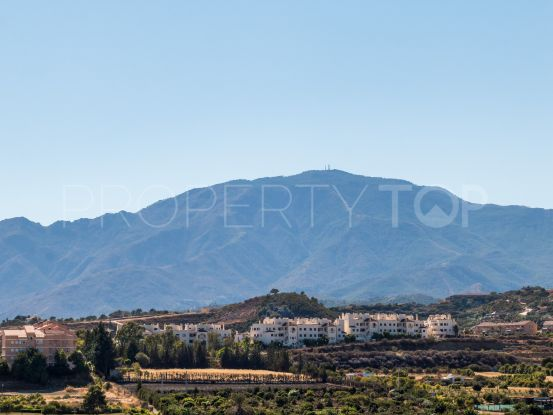 Apartment for sale in Cancelada, Estepona | Winkworth