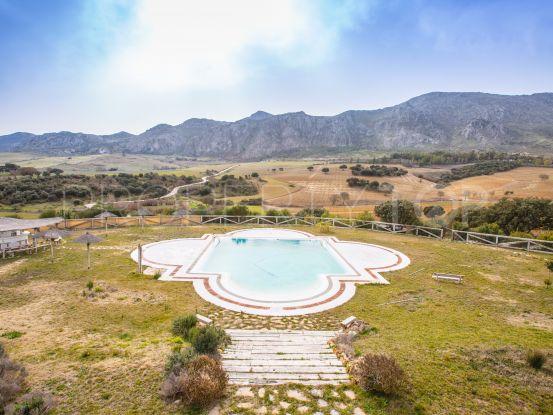 Finca in Antequera for sale | Casa Consulting