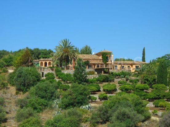 For sale finca with 5 bedrooms in Alhaurin de la Torre   Marbella Hills Homes