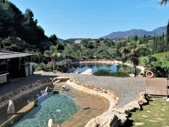 Buy finca in Coin | Serneholt Estate