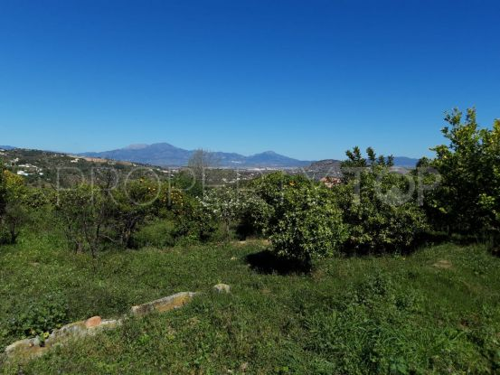 Alhaurin el Grande plot for sale | Keller Williams Marbella