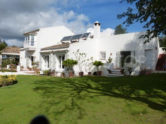 Buy villa in Sotogrande Alto | Noll & Partners