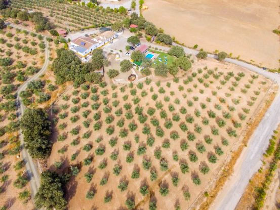Archidona 12 bedrooms finca for sale | Your Property in Spain