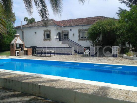 Finca in Ronda | Your Property in Spain