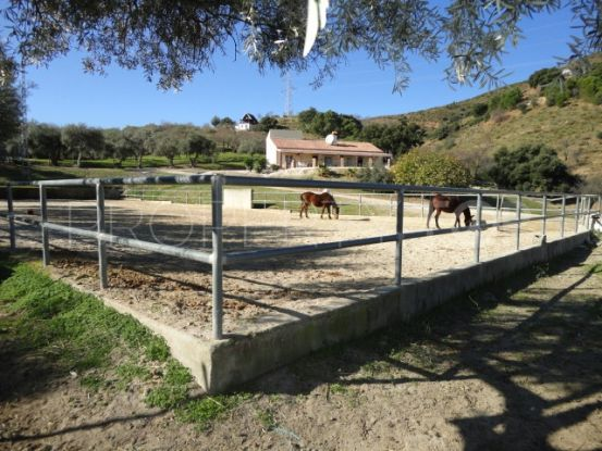 Finca with 4 bedrooms for sale in Monda   Your Property in Spain