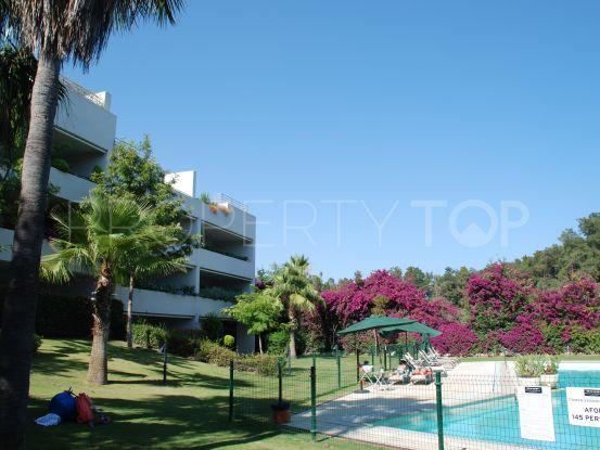 4 bedrooms apartment in Polo Gardens for sale   Sotogrande Premier Estates