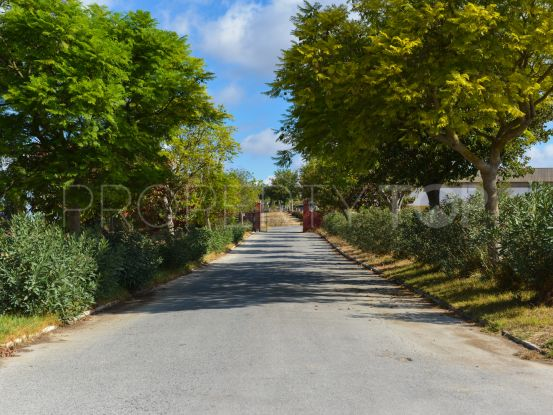 For sale cortijo in Arcos de la Frontera | Villas & Fincas