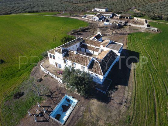 8 bedrooms cortijo in Ronda   Villas & Fincas