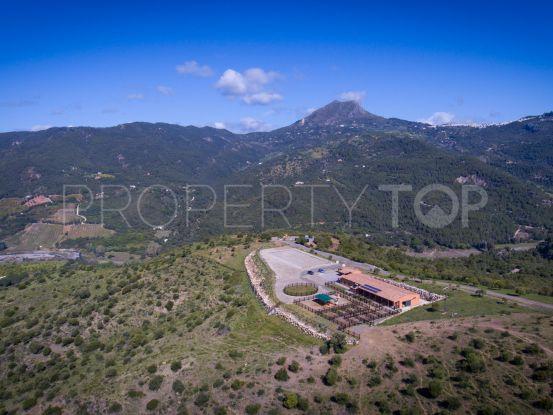 Buy finca with 3 bedrooms in Casares | Villas & Fincas