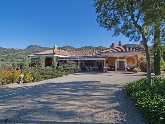For sale finca in Gaucin | Inmo Andalucía