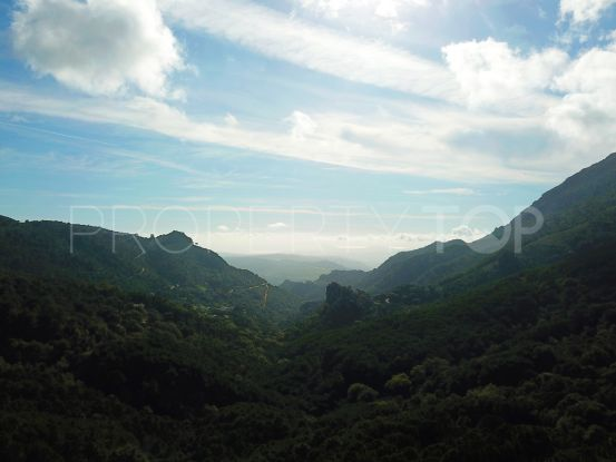 Plot for sale in Casares Montaña | DM Properties