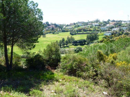 Plot for sale in Almenara | Savills Sotogrande