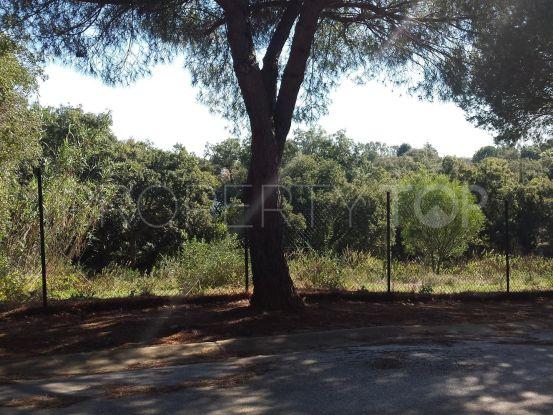 Plot for sale in Sotogrande Alto | Savills Sotogrande