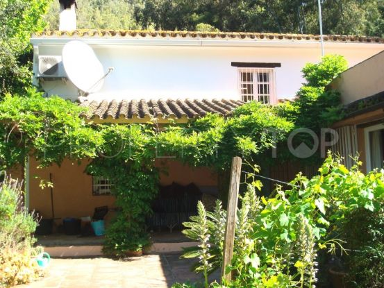 For sale finca in Jimena de La Frontera | Savills Sotogrande