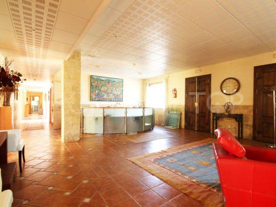 Office for sale in Estepona | Terra Meridiana