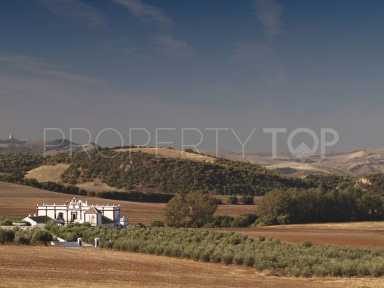 Country house in Ronda with 7 bedrooms | Terra Meridiana