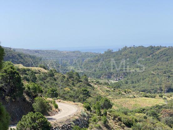 For sale plot in Monte Mayor   Terra Meridiana