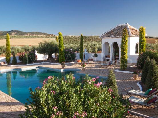 Country house in Ronda   Terra Meridiana