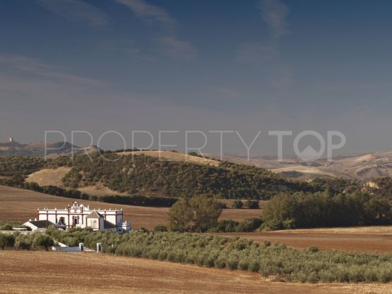 Country house in Ronda | Terra Meridiana