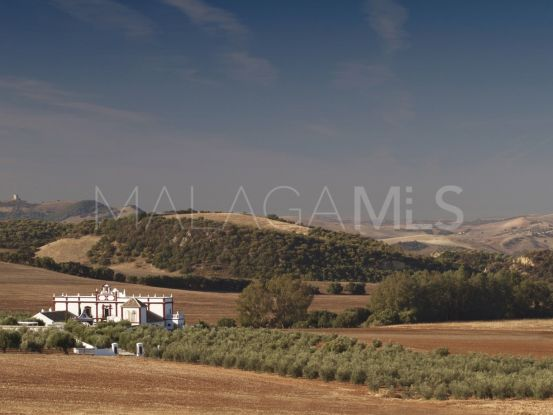 Country house in Ronda | Terra Meridiana