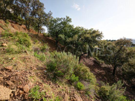 Plot for sale in La Zagaleta | Terra Meridiana