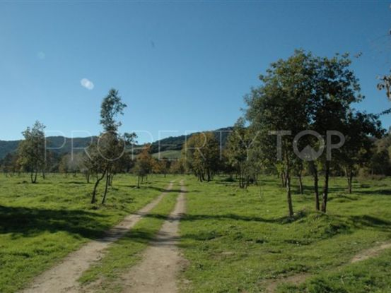 Plot in Jimena de La Frontera for sale | Goli Real Estate
