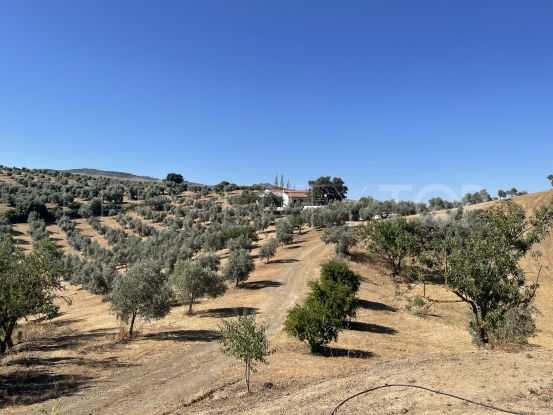3 bedrooms finca in Antequera   Selection Med