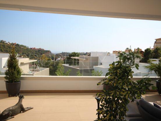 3 bedrooms Botanic ground floor apartment   MPDunne - Hamptons International