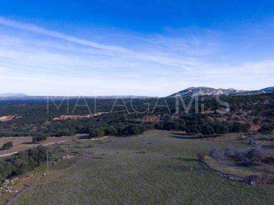 For sale plot in Ronda   Villas & Fincas