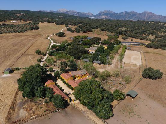 Buy 7 bedrooms cortijo in Ronda   Villas & Fincas