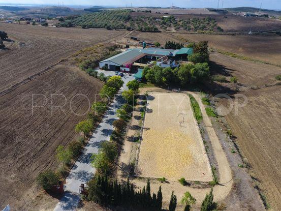 For sale cortijo in Arcos de la Frontera | Villas & Fincas