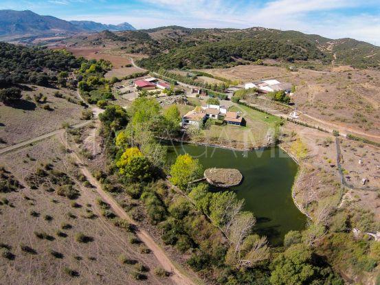 Cortijo for sale in Antequera with 33 bedrooms | Villas & Fincas