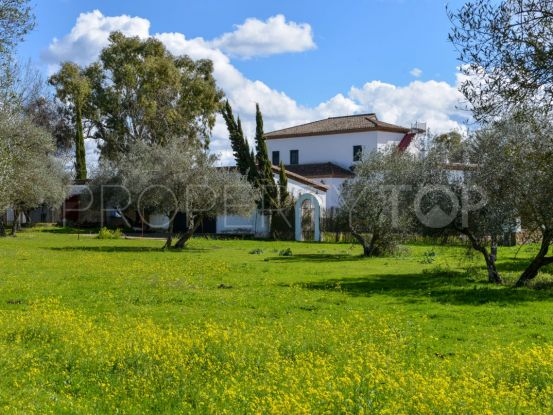 For sale Cazalla de la Sierra cortijo with 8 bedrooms | Villas & Fincas