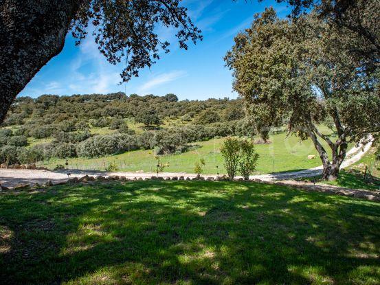 Ronda estate for sale | Villas & Fincas