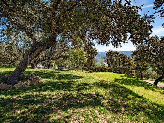 For sale Ronda estate   Villas & Fincas