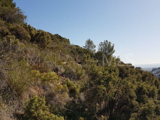 Comprar parcela de  en El Madroñal, Benahavis | DM Properties