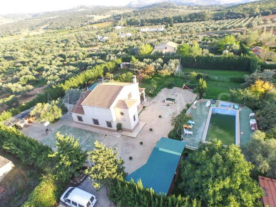 For sale finca in Ronda   Your Property in Spain