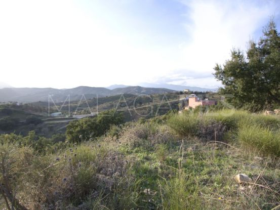 For sale Monda plot | Michael Moon