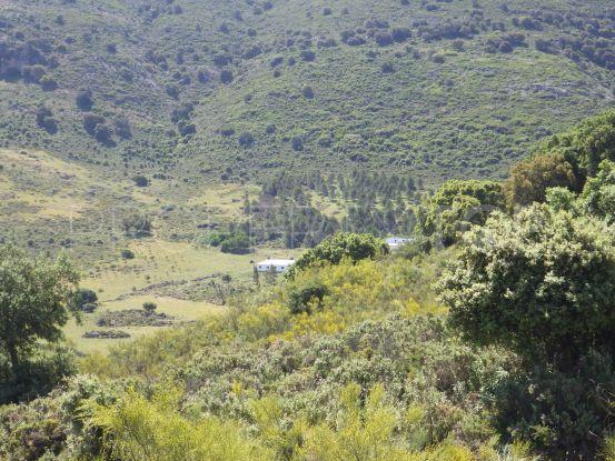 Plot for sale in Ronda | Serneholt Estate