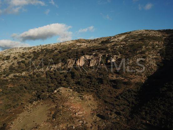 For sale plot in Ronda | Serneholt Estate