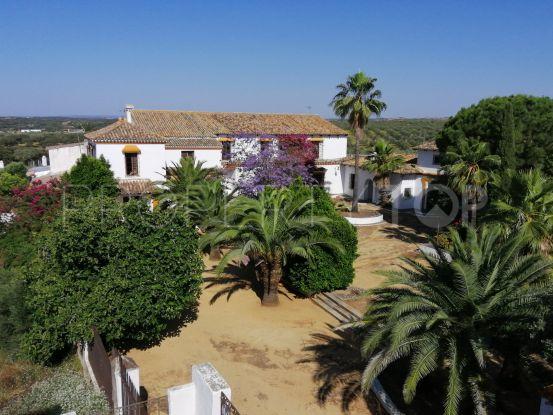 Buy estate in Gerena with 12 bedrooms   Seville Sotheby's International Realty