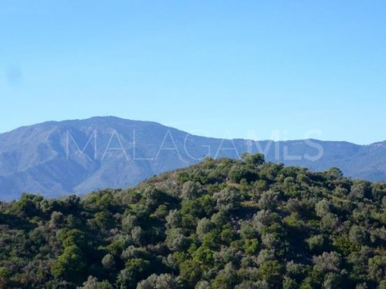 For sale La Panera plot | Key Real Estate