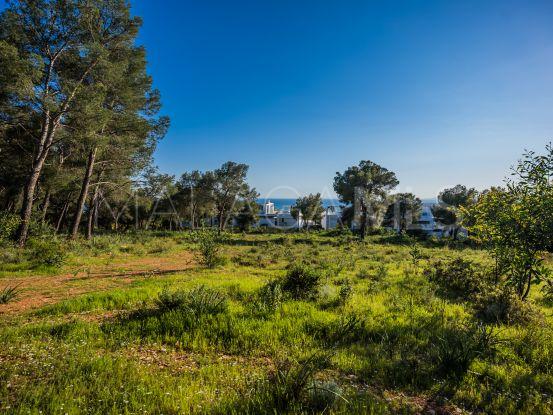 Plot for sale in Sierra Blanca | Drumelia Real Estates