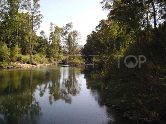 For sale plot in Estacion de Gaucin, Cortes de la Frontera | Bromley Estates