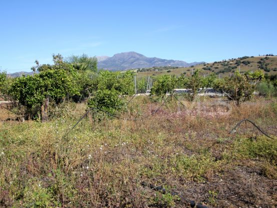 Plot for sale in Coin   Bromley Estates